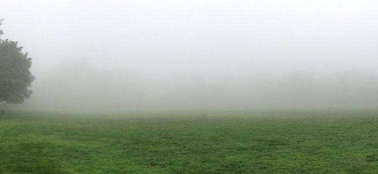 fog 1200×350